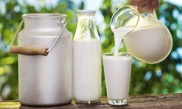Ученые рассказали о смертельной опасности коровьего молока для детей